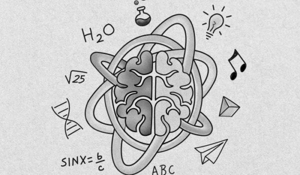 Cómo funciona nuestro cerebro al aprender