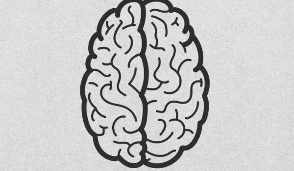 #Neurotonterías versus #Neurociencia