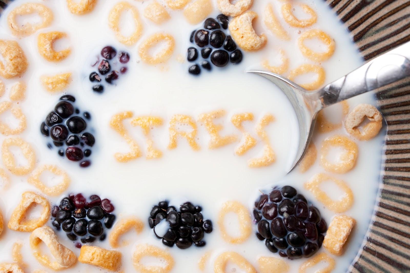 Estrés: la cantidad determina la calidad